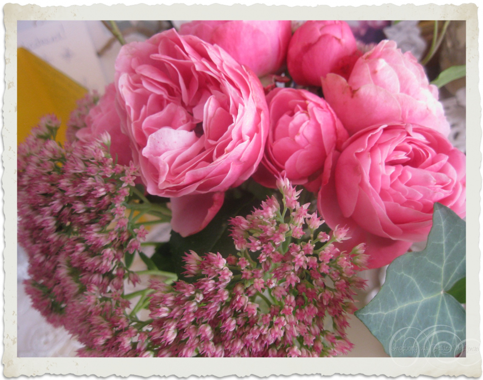 Roses and Sedum from the garden